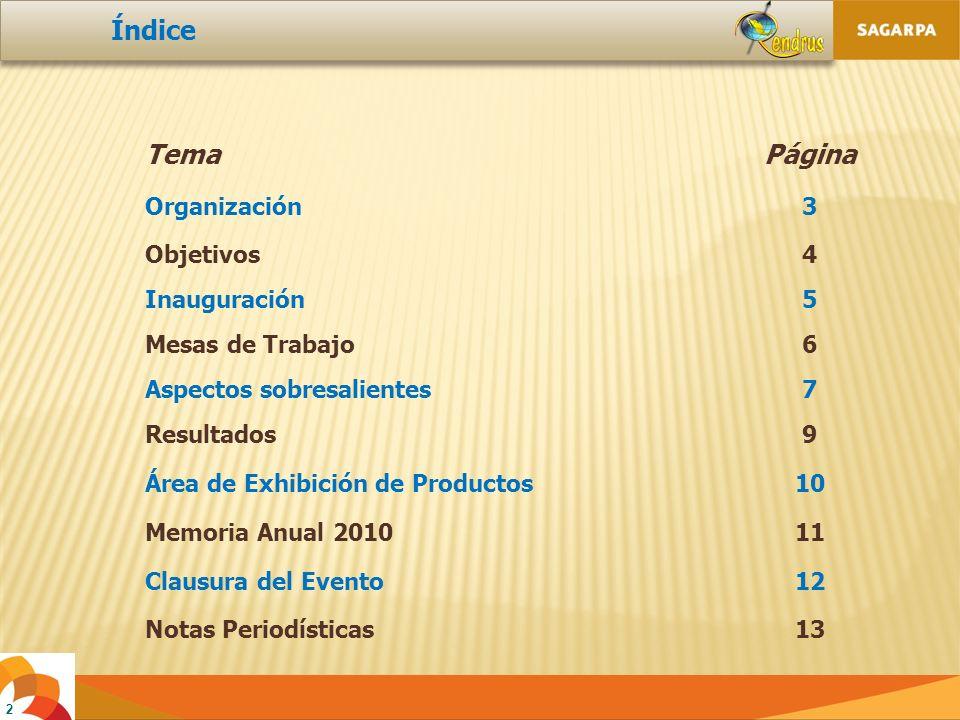 13 10.- Notas periodísticas