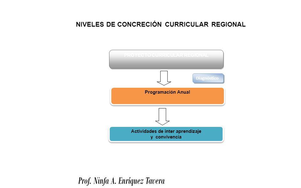 PROYECTO CURRICULAR REGIONAL Programación Anual Actividades de inter aprendizaje y convivencia Actividades de inter aprendizaje y convivencia Diagnóst