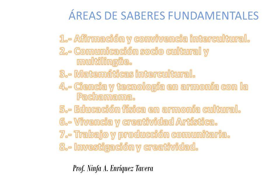 ÁREAS DE SABERES FUNDAMENTALES Prof. Ninfa A. Enríquez Tavera