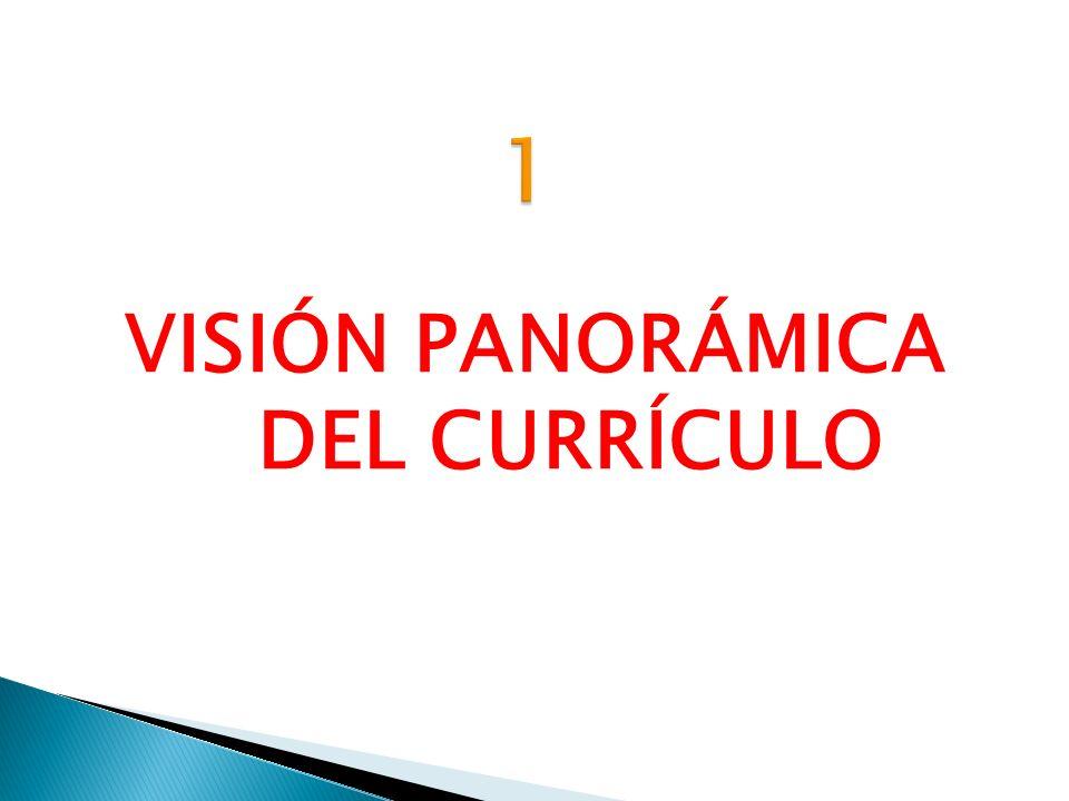 El currículo es un conjunto de experiencias previstas y deseables de aprendizaje y de enseñanza, que se registran en un documento.