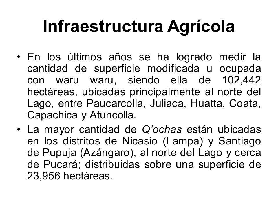 Infraestructura Agrícola En los últimos años se ha logrado medir la cantidad de superficie modificada u ocupada con waru waru, siendo ella de 102,442