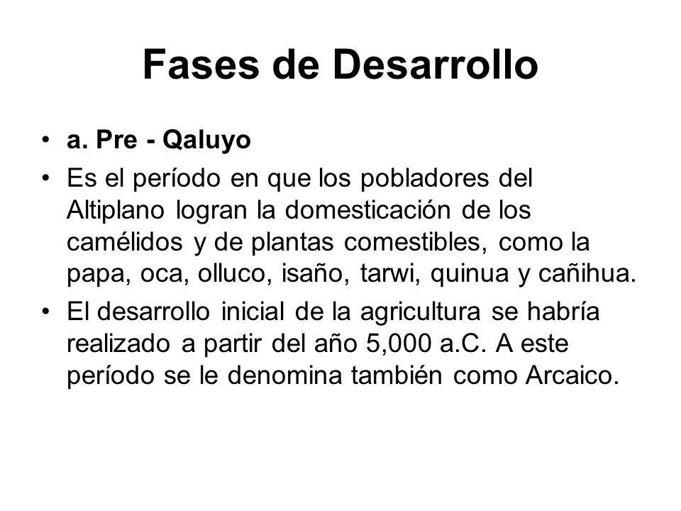 Fases de Desarrollo a. Pre - Qaluyo Es el período en que los pobladores del Altiplano logran la domesticación de los camélidos y de plantas comestible