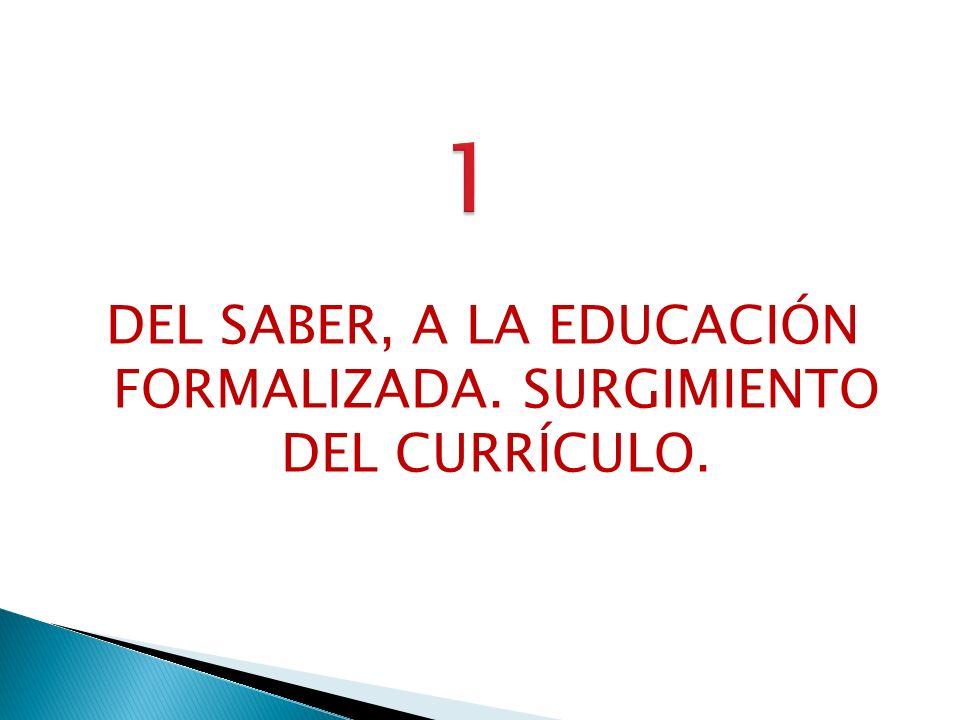 El Saber está constituido por el conjunto de Conocimientos, de Afectos-Valores y de Formas de tomar decisiones, social e históricamente producido, acumulado y recreado.