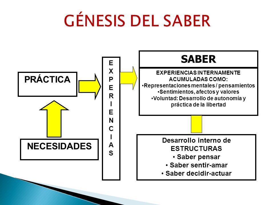Formación integral.- Un currículo meramente cognitivo contradice la cosmovisión andina.