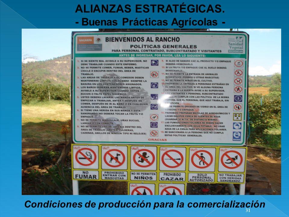 ALIANZAS ESTRATÉGICAS. - Buenas Prácticas Agrícolas - Condiciones de producción para la comercialización 31