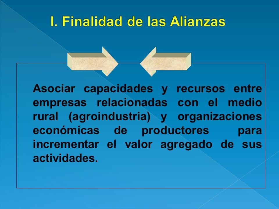 Asociar capacidades y recursos entre empresas relacionadas con el medio rural (agroindustria) y organizaciones económicas de productores para incremen