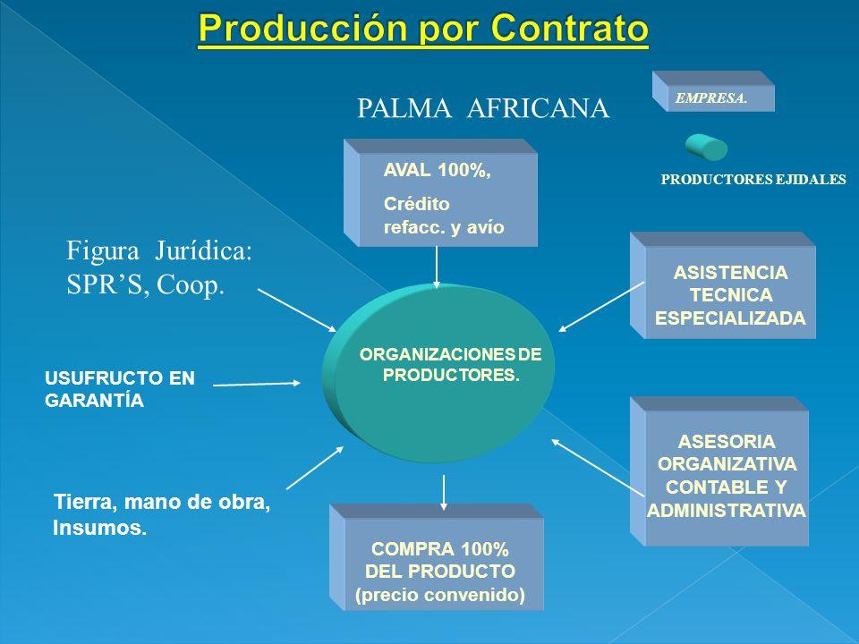 ORGANIZACIONES DE PRODUCTORES. PRODUCTORES EJIDALES AVAL 100%, Crédito refacc. y avío ASISTENCIA TECNICA ESPECIALIZADA ASESORIA ORGANIZATIVA CONTABLE