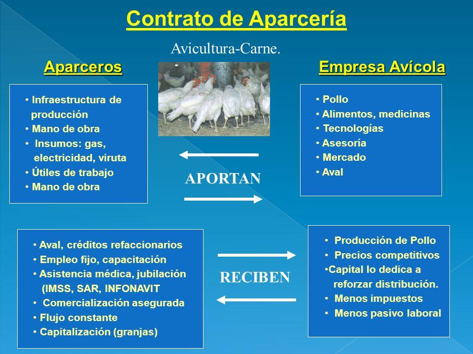 Contrato de Aparcería Empresa Avícola Aparceros Avicultura-Carne. Infraestructura de producción Mano de obra Insumos: gas, electricidad, viruta Útiles