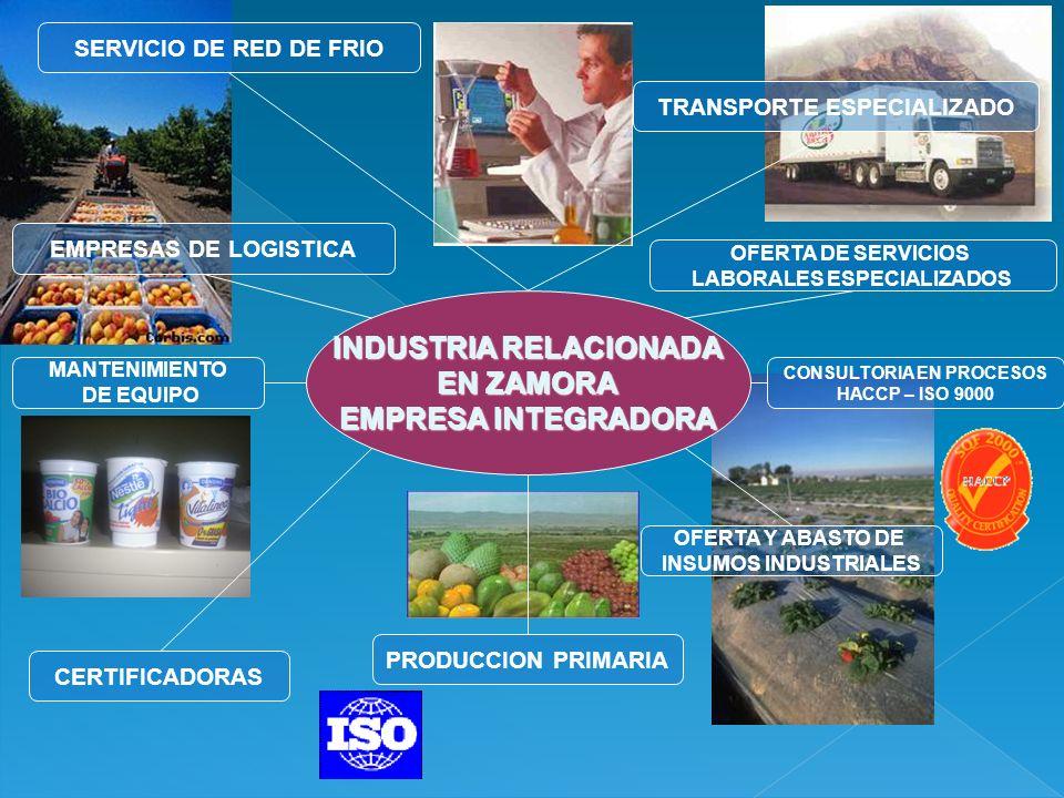 INDUSTRIA RELACIONADA EN ZAMORA EMPRESA INTEGRADORA MANTENIMIENTO DE EQUIPO EMPRESAS DE LOGISTICA SERVICIO DE RED DE FRIO CERTIFICADORAS CONSULTORIA E