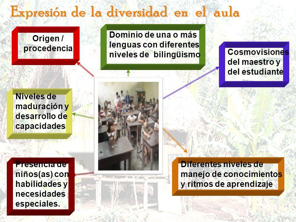 Cosmovisiones del maestro y del estudiante Niveles de maduración y desarrollo de capacidades Dominio de una o más lenguas con diferentes niveles de bi