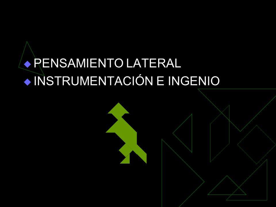 PENSAMIENTO LATERAL INSTRUMENTACIÓN E INGENIO