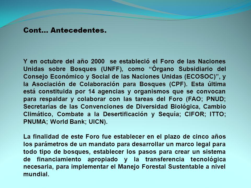 Y en octubre del año 2000 se estableció el Foro de las Naciones Unidas sobre Bosques (UNFF), como Órgano Subsidiario del Consejo Económico y Social de