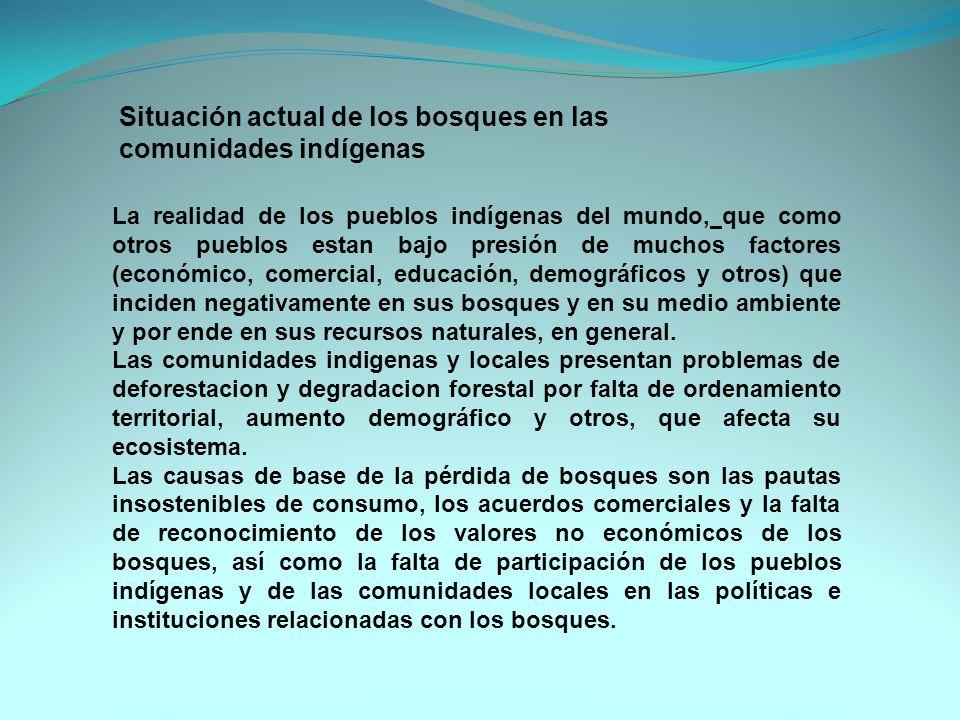 La realidad de los pueblos indígenas del mundo, que como otros pueblos estan bajo presión de muchos factores (económico, comercial, educación, demográ