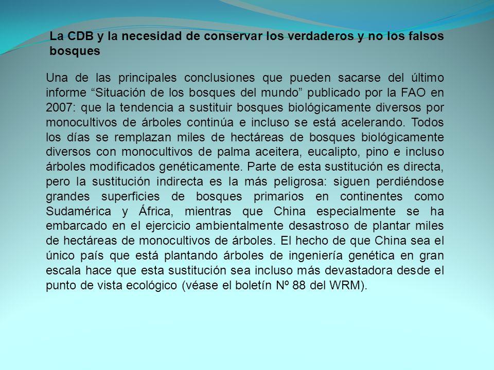 Una de las principales conclusiones que pueden sacarse del último informe Situación de los bosques del mundo publicado por la FAO en 2007: que la tend