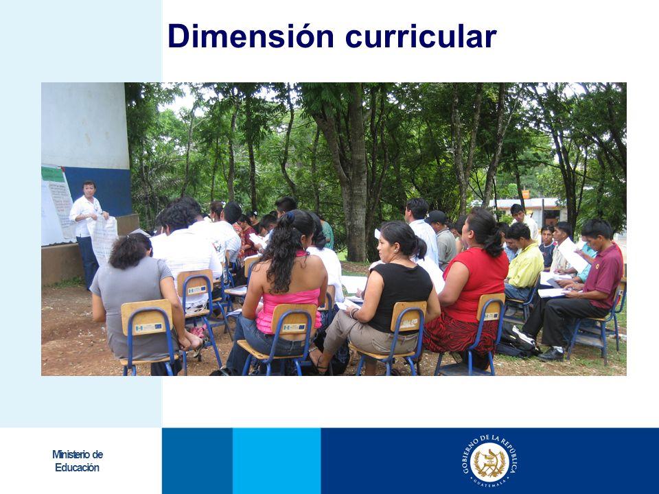 Ministerio de Educación Dimensión curricular
