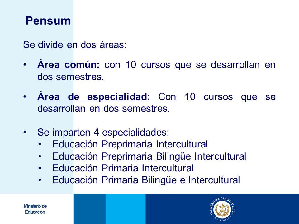 Ministerio de Educación Se divide en dos áreas: Área común: con 10 cursos que se desarrollan en dos semestres. Área de especialidad: Con 10 cursos que