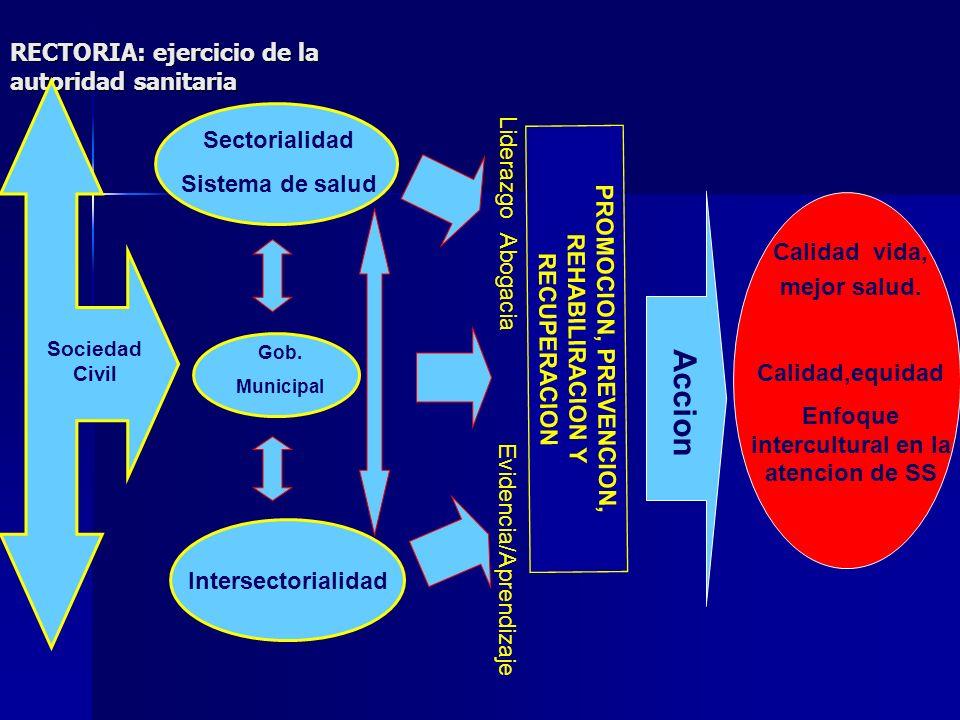 RECTORIA: ejercicio de la autoridad sanitaria Calidad vida, mejor salud. Calidad,equidad Enfoque intercultural en la atencion de SS PROMOCION, PREVENC