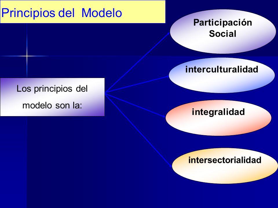 Principios del Modelo Participación Social interculturalidad integralidad intersectorialidad Los principios del modelo son la: