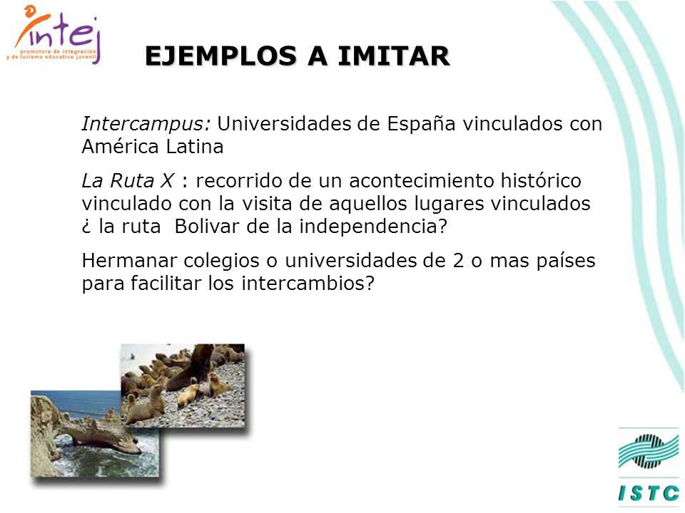 Cursos cortos en universidades de Perú para extranjeros Cursos en Universidades de Perú que tienen créditos para universidades del extranjero : EL PROGRAMA CON LAS UNIVERSIDADES PUEDEN SER LA BASE PARA UN PROGRAMA A NIVEL DE LA CAN PROGRAMAS Y EXPERIENCIAS