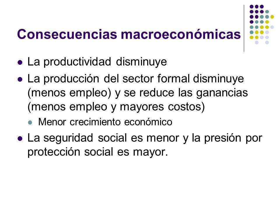 Consecuencias macroeconómicas La productividad disminuye La producción del sector formal disminuye (menos empleo) y se reduce las ganancias (menos empleo y mayores costos) Menor crecimiento económico La seguridad social es menor y la presión por protección social es mayor.