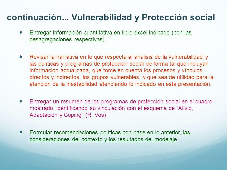 continuación... Vulnerabilidad y Protección social Entregar información cuantitativa en libro excel indicado (con las desagregaciones respectivas). Re