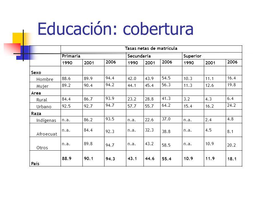 Educación: cobertura Tasas netas de matrícula PrimariaSecundariaSuperior 19902001 2006 19902001 2006 19902001 2006 Sexo Hombre 88.689.9 94.4 42.043.9