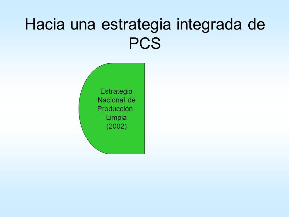Estrategia Nacional en Producción Limpia 2002/03: proyecto UN DESA con el objetivo de desarrollar la Estrategia Nacional de Producción Limpia (ENPL) Apoyado en un grupo de Expertos (formado por el sector público y privado) para guiar la definición y diseño de la ENPL Estudios de base: –Estudio de Diagnóstico sobre oportunidades y capacidades para PL en el sector industrial – Evaluación de Sustitución por Tecnologías Limpias para dos sectores: azúcar y aserraderos –Revisión de Políticas: inentificar los programas, políticas y herramientas a nivel nacional vinculadas a PL – Inventario de instrumentos de financiamientos para PL