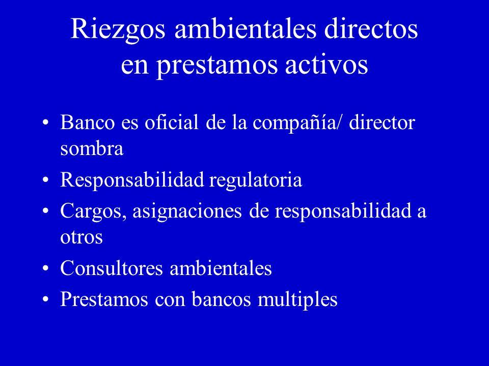 Impacto ambiental en las finanzas del prestamista Responsabilidad por limpieza Multas ambientales Bajas en Producción Permisologia ambiental Inversion