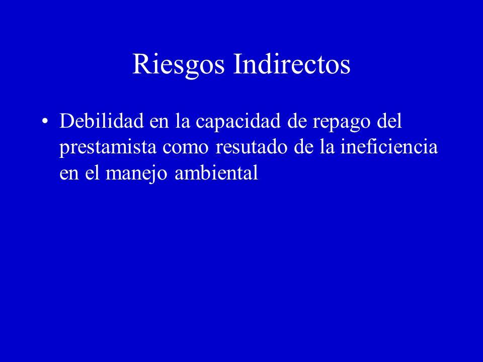 Riezgos ambientales directos en prestamos activos Banco es oficial de la compañía/ director sombra Responsabilidad regulatoria Cargos, asignaciones de