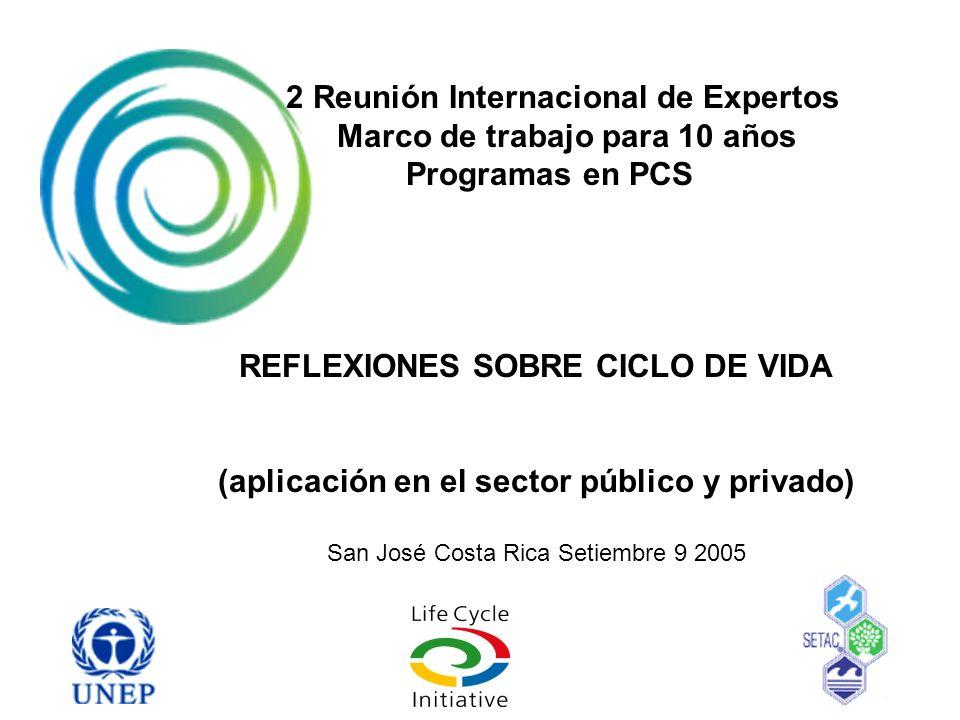 2 Reunión Internacional de Expertos Marco de trabajo para 10 años Programas en PCS REFLEXIONES SOBRE CICLO DE VIDA (aplicación en el sector público y