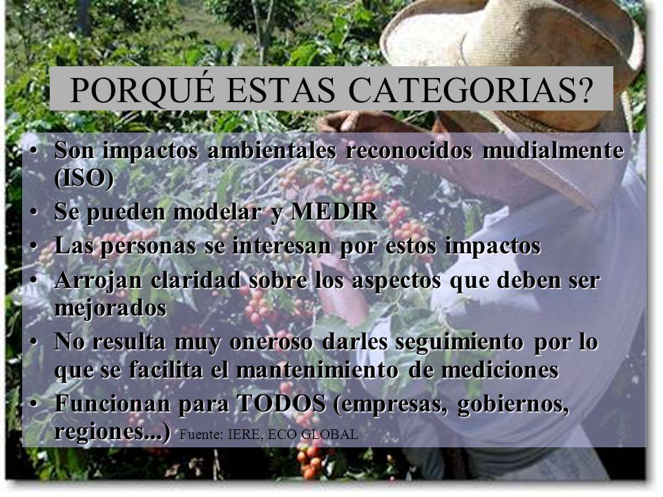 PORQUÉ ESTAS CATEGORIAS? Son impactos ambientales reconocidos mudialmente (ISO)Son impactos ambientales reconocidos mudialmente (ISO) Se pueden modela
