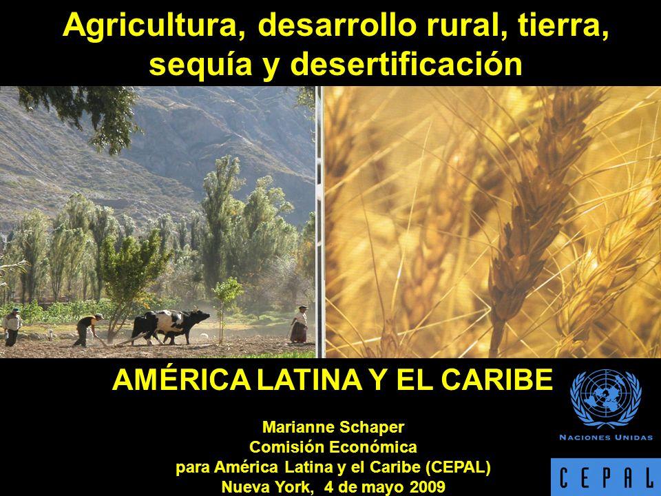 AMÉRICA LATINA Y EL CARIBE Marianne Schaper Comisión Económica para América Latina y el Caribe (CEPAL) Nueva York, 4 de mayo 2009 Agricultura, desarrollo rural, tierra, sequía y desertificación