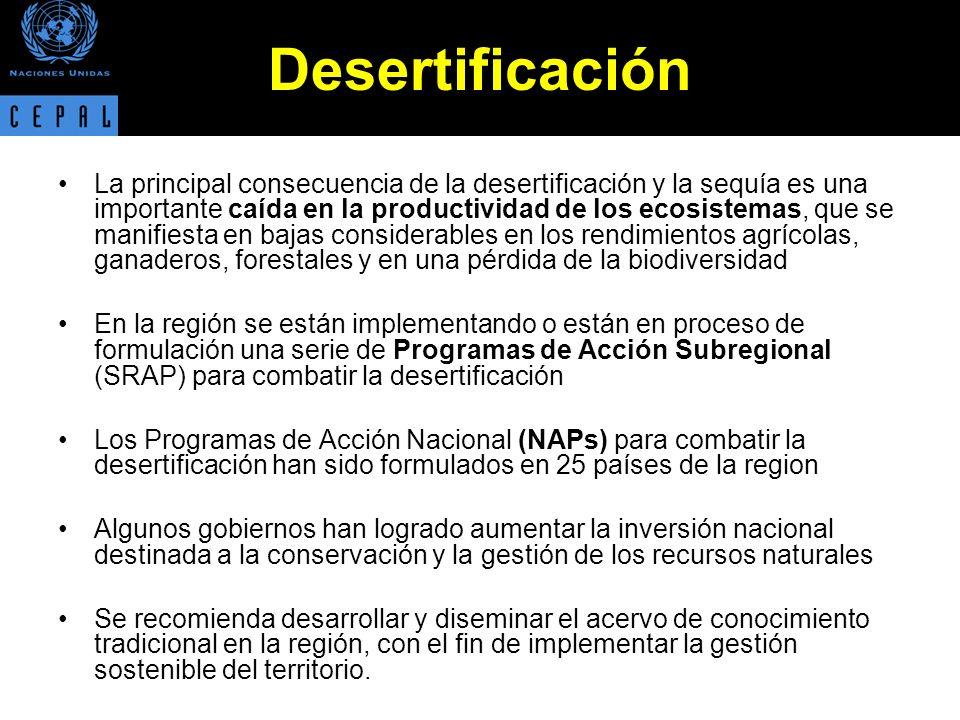 Desertificación La principal consecuencia de la desertificación y la sequía es una importante caída en la productividad de los ecosistemas, que se manifiesta en bajas considerables en los rendimientos agrícolas, ganaderos, forestales y en una pérdida de la biodiversidad En la región se están implementando o están en proceso de formulación una serie de Programas de Acción Subregional (SRAP) para combatir la desertificación Los Programas de Acción Nacional (NAPs) para combatir la desertificación han sido formulados en 25 países de la region Algunos gobiernos han logrado aumentar la inversión nacional destinada a la conservación y la gestión de los recursos naturales Se recomienda desarrollar y diseminar el acervo de conocimiento tradicional en la región, con el fin de implementar la gestión sostenible del territorio.