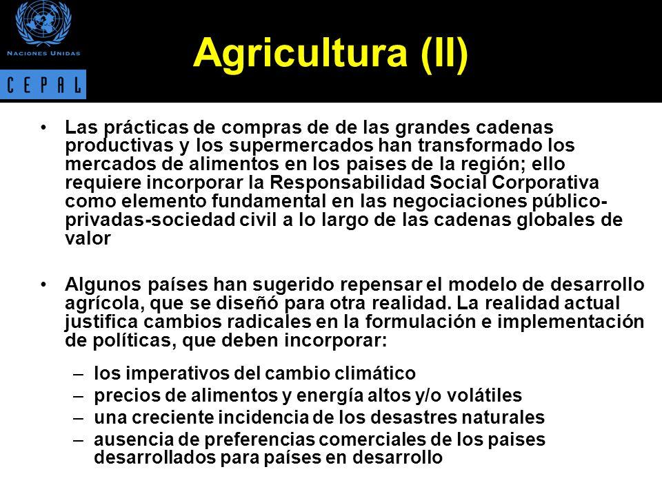 La promoción del desarrollo agrícola y rural requiere de políticas que promuevan: –una adecuada provisión de servicios, tales como acceso al crédito, tecnología y educación a la población rural.