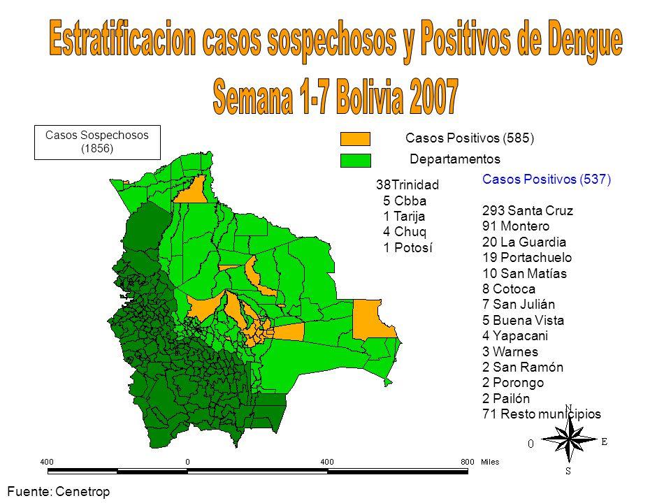 Casos Positivos (585) Departamentos 38Trinidad 5 Cbba 1 Tarija 4 Chuq 1 Potosí Casos Sospechosos (1856) Casos Positivos (537) 293 Santa Cruz 91 Monter