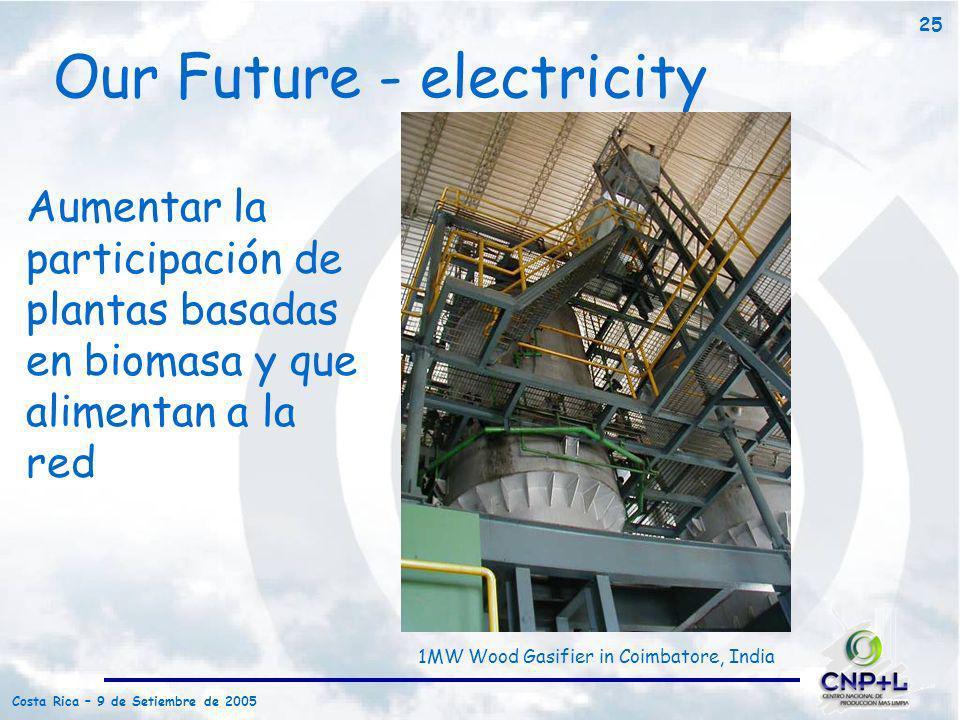 Costa Rica – 9 de Setiembre de 2005 25 Our Future - electricity Aumentar la participación de plantas basadas en biomasa y que alimentan a la red 1MW W