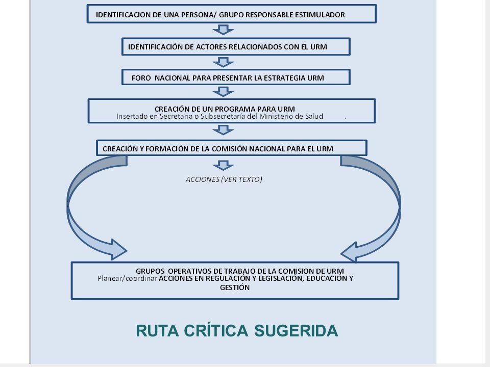 RUTA CRÍTICA SUGERIDA