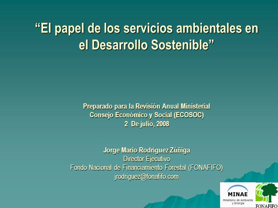 El papel de los servicios ambientales en el Desarrollo Sostenible Preparado para la Revisión Anual Ministerial Consejo Económico y Social (ECOSOC) 2 D