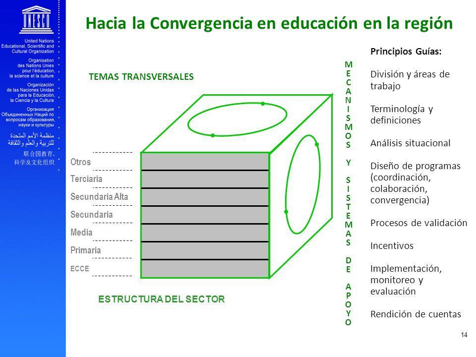 EFA and youth transition to work 14 Principios Guías: División y áreas de trabajo Terminología y definiciones Análisis situacional Diseño de programas