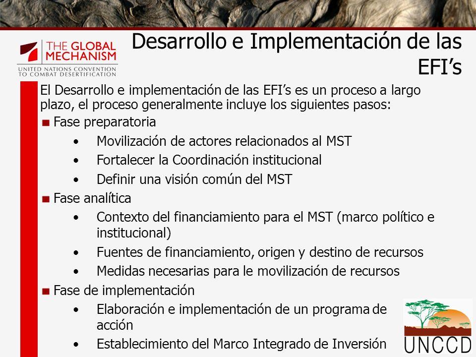 El Desarrollo e implementación de las EFIs es un proceso a largo plazo, el proceso generalmente incluye los siguientes pasos: Fase preparatoria Movili