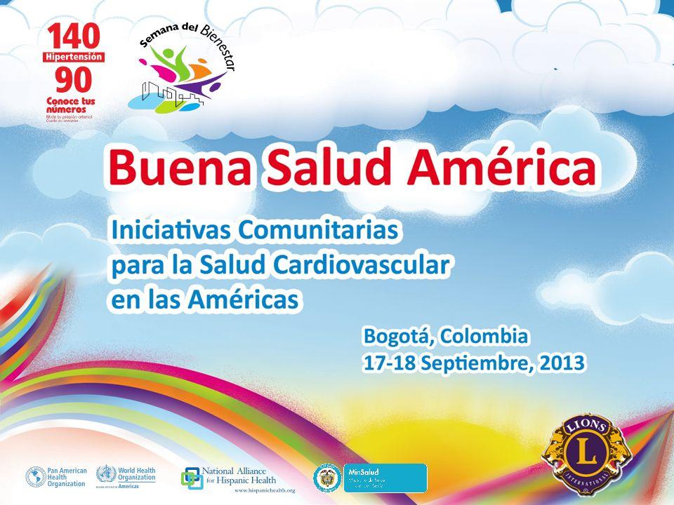 Buena Salud América Inserte su logo Obstáculos enfrentados y soluciones planteadas La dependencia del programa de Enfermedades Crónicas no Trasmisibles del Ministerio de Salud.