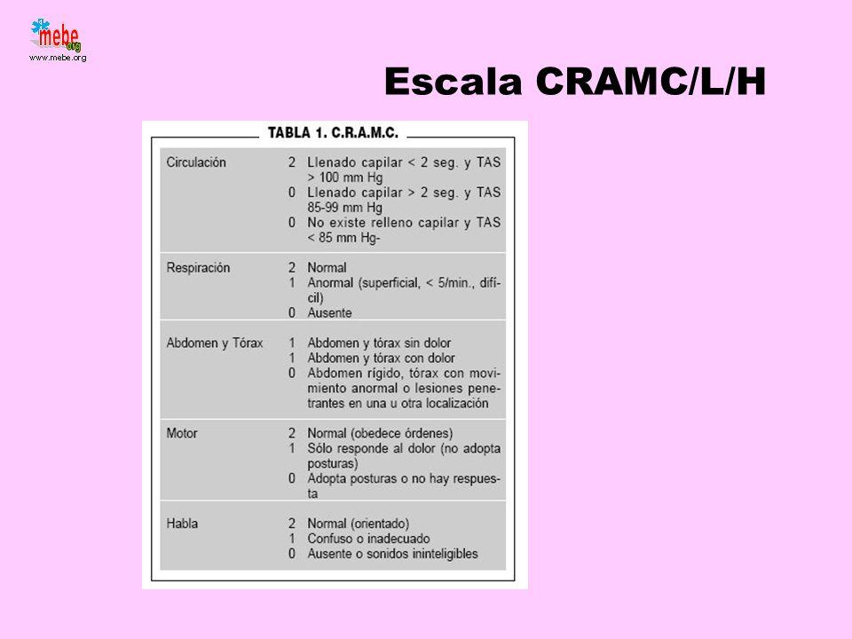 Escala CRAMC/L/H