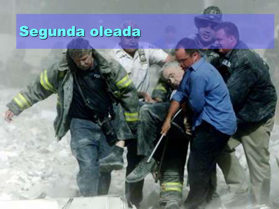 www.mebe.org Primera oleada