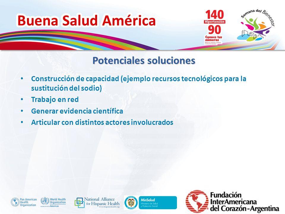 Buena Salud América Inserte su logo Construcción de capacidad (ejemplo recursos tecnológicos para la sustitución del sodio) Trabajo en red Generar evi