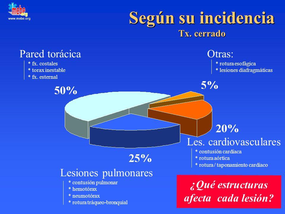 www.mebe.org Según su incidencia Tx. cerrado Pared torácica * fx. costales * torax inestable * fx. esternal Les. cardiovasculares * contusión cardíaca