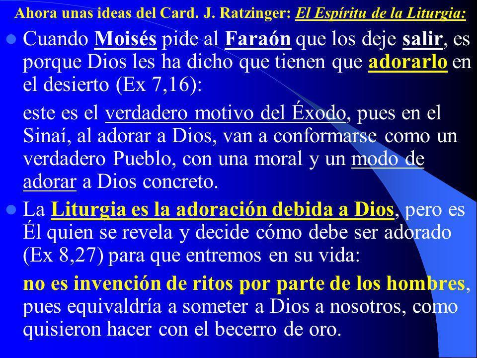 Cuando Moisés pide al Faraón que los deje salir, es porque Dios les ha dicho que tienen que adorarlo en el desierto (Ex 7,16): este es el verdadero motivo del Éxodo, pues en el Sinaí, al adorar a Dios, van a conformarse como un verdadero Pueblo, con una moral y un modo de adorar a Dios concreto.