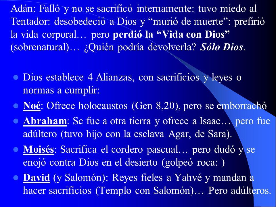Dios establece 4 Alianzas, con sacrificios y leyes o normas a cumplir: Noé: Ofrece holocaustos (Gen 8,20), pero se emborrachó Abraham: Se fue a otra tierra y ofrece a Isaac… pero fue adúltero (tuvo hijo con la esclava Agar, de Sara).