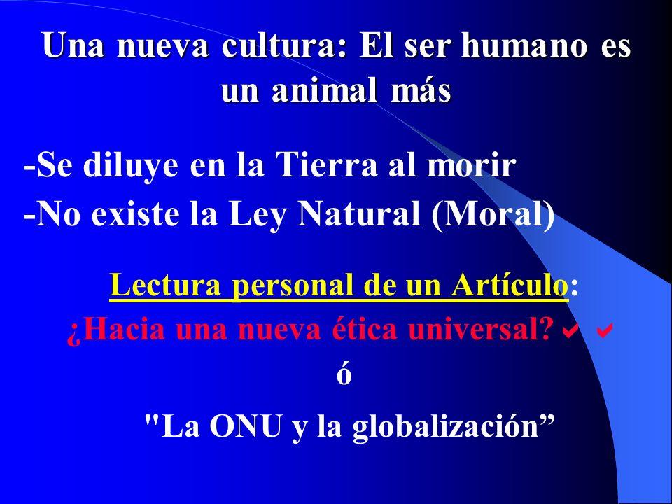 La ONU y la globalización (