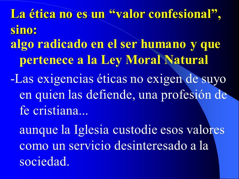 Capítulo III. PRINCIPIOS DE LA DOCTRINA CATÓLICA ACERCA DEL LAICISMO Y EL PLURALISMO N.5 -Un fiel laico puede buscar pluralidad de metodologías para s