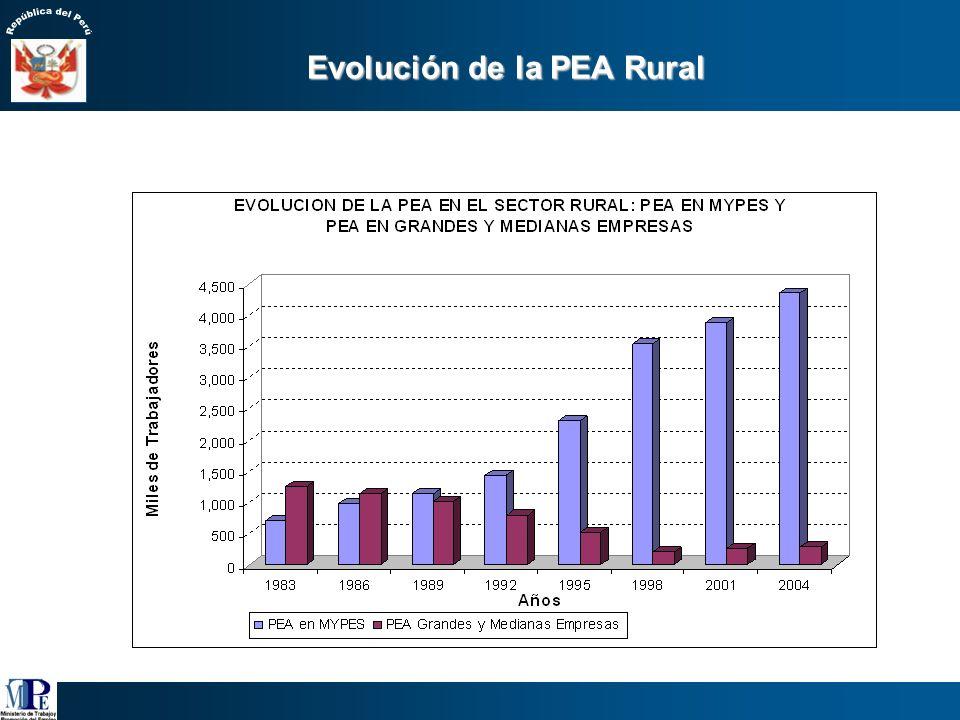 Perú: PEA Ocupada según segmentos laborales, 2005 1/. Incluye a los independientes que utilizan trabajadores familiares no remunerados (TFNR) y tambié